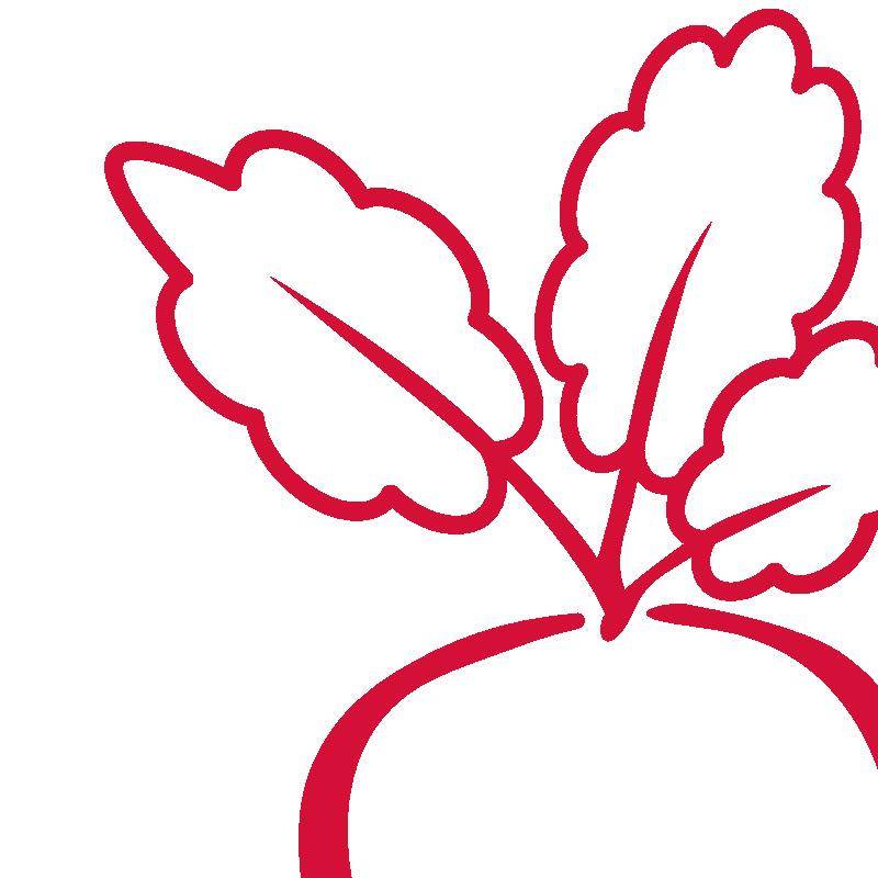 Karotte Rauna Apfelsaft
